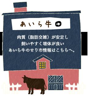 あいら牛 肉質(脂肪交雑)が安定し飼いやすく増体が良いあいら牛のせり市情報はこちらへ