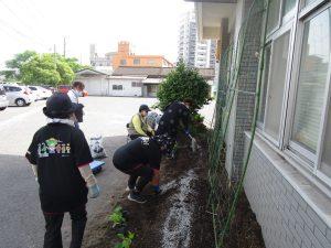 女性部 国分支部 緑のカーテンエコプロジェクト